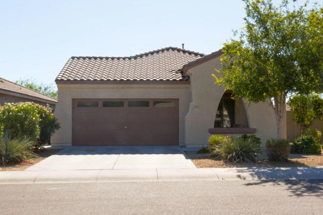 2504 S 115TH Drive, Avondale, AZ 85323 (MLS #5783812) :: Group 46:10