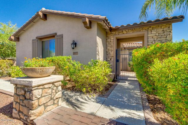 137 W Lynx Way, Chandler, AZ 85248 (MLS #5783817) :: The Wehner Group
