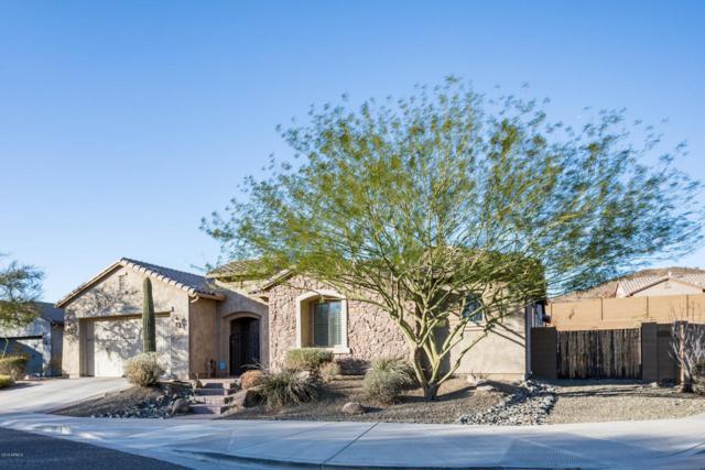 1604 W White Feather Lane, Phoenix, AZ 85085 (MLS #5783834) :: Lux Home Group at  Keller Williams Realty Phoenix