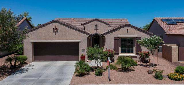 3245 N 163RD Drive, Goodyear, AZ 85395 (MLS #5783875) :: Kortright Group - West USA Realty