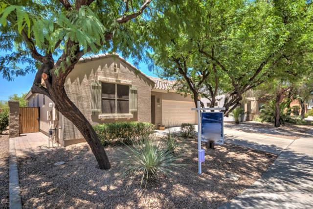 3712 E Sebastian Lane, Gilbert, AZ 85297 (MLS #5783901) :: My Home Group