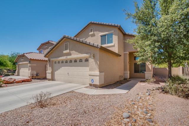 28880 N Nugget Court, San Tan Valley, AZ 85143 (MLS #5783921) :: Group 46:10