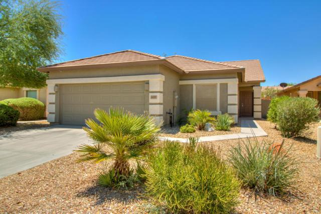 44597 W Mescal Street, Maricopa, AZ 85138 (MLS #5783937) :: Group 46:10