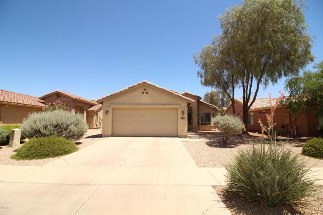 2592 E Santa Maria Drive, Casa Grande, AZ 85194 (MLS #5784025) :: Yost Realty Group at RE/MAX Casa Grande