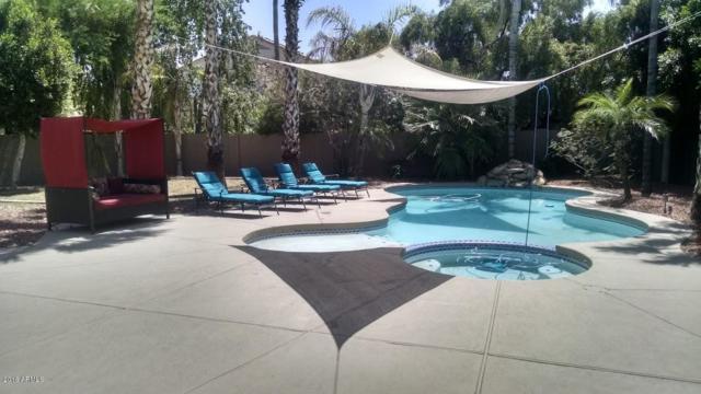 11135 W Dana Lane, Avondale, AZ 85392 (MLS #5784060) :: Lifestyle Partners Team