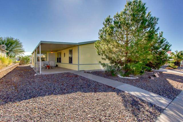 3815 N Montana Avenue, Florence, AZ 85132 (MLS #5784116) :: The Daniel Montez Real Estate Group