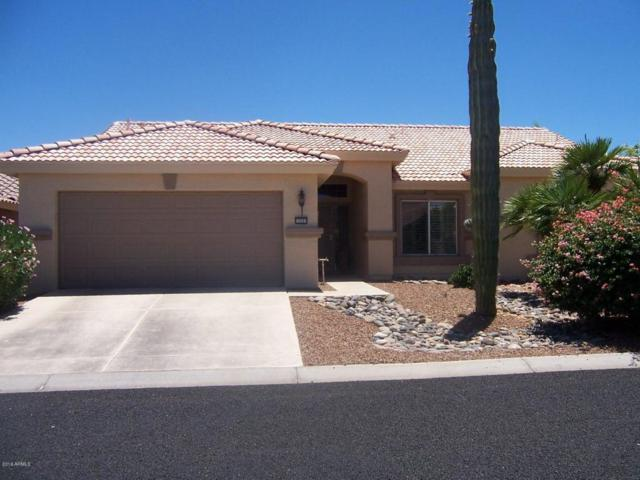 15291 W Piccadilly Road, Goodyear, AZ 85395 (MLS #5784123) :: Santizo Realty Group