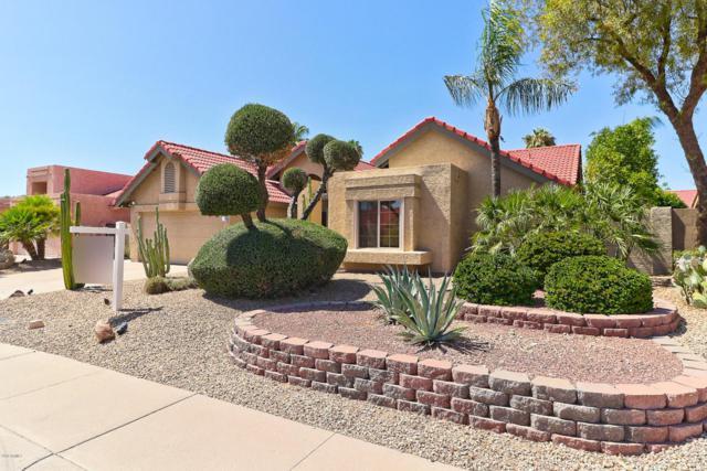 11026 E Clinton Street, Scottsdale, AZ 85259 (MLS #5784125) :: Group 46:10
