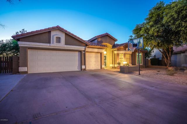510 N Yucca Street, Chandler, AZ 85224 (MLS #5784209) :: Group 46:10
