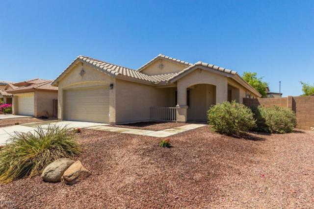 25570 W St Catherine Avenue, Buckeye, AZ 85326 (MLS #5784213) :: My Home Group
