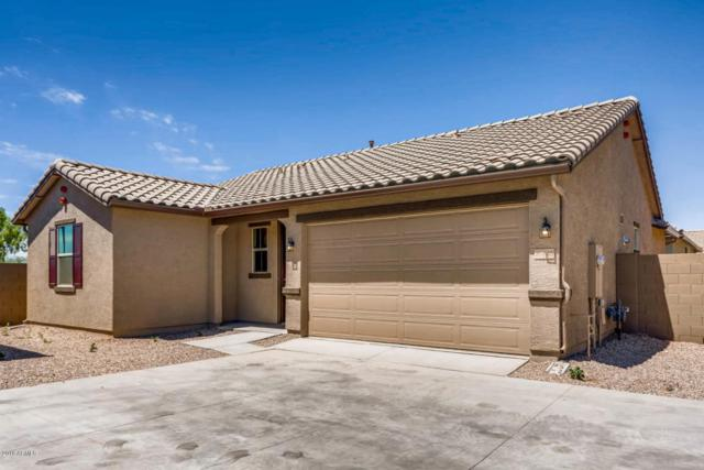 16445 W Culver Street, Goodyear, AZ 85338 (MLS #5784215) :: Santizo Realty Group