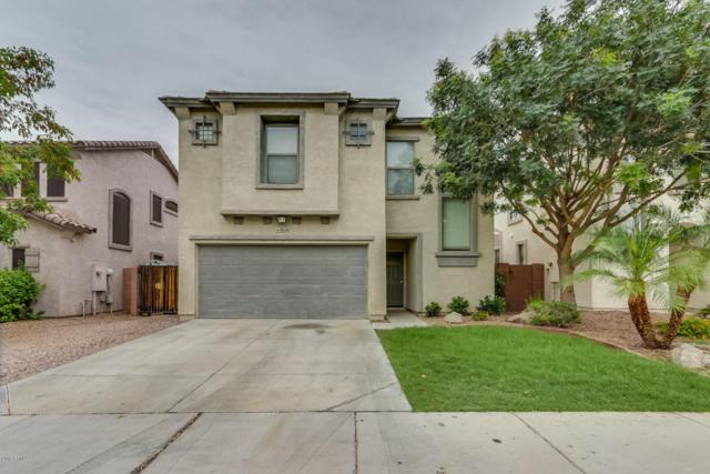 9828 E Empress Avenue, Mesa, AZ 85208 (MLS #5784230) :: Group 46:10