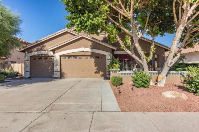 20633 N 55TH Avenue, Glendale, AZ 85308 (MLS #5784259) :: My Home Group
