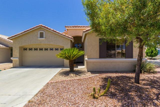 17685 W Arcadia Drive, Surprise, AZ 85374 (MLS #5784277) :: Five Doors Network