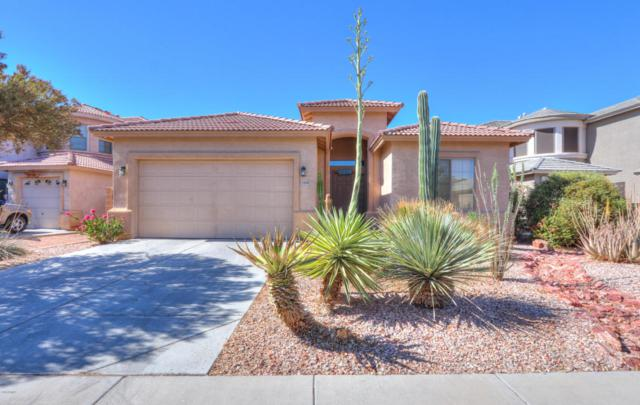 43850 W Snow Drive, Maricopa, AZ 85138 (MLS #5784285) :: Five Doors Network