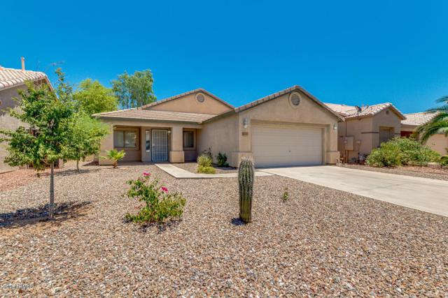 30689 N Royal Oak Way, San Tan Valley, AZ 85143 (MLS #5784303) :: Gilbert Arizona Realty