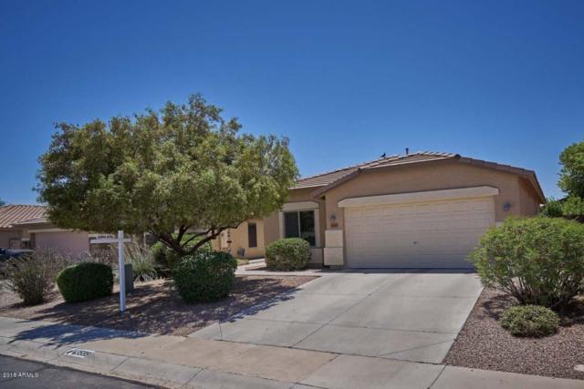 43599 W Elm Drive, Maricopa, AZ 85138 (MLS #5784318) :: Yost Realty Group at RE/MAX Casa Grande