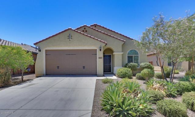 26077 W Sequoia Drive, Buckeye, AZ 85396 (MLS #5784333) :: Kortright Group - West USA Realty