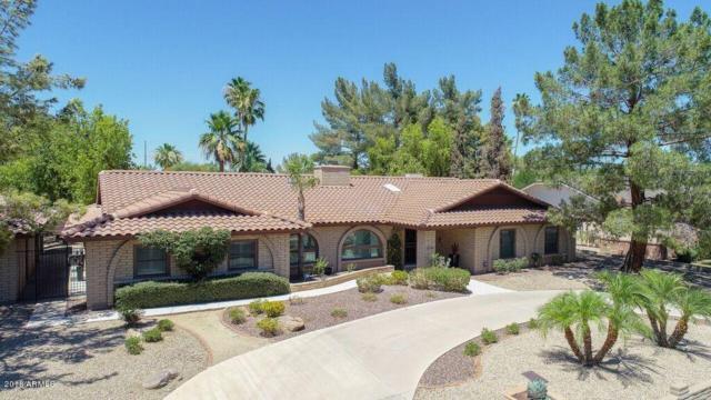 7732 W Wagoner Road, Glendale, AZ 85308 (MLS #5784350) :: Kortright Group - West USA Realty