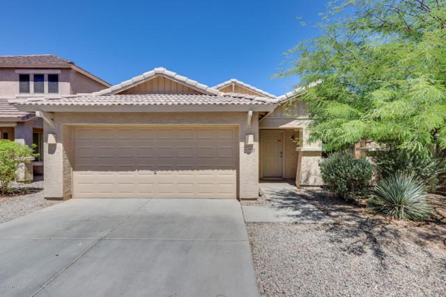 29093 N Yellow Bee Drive, San Tan Valley, AZ 85143 (MLS #5784352) :: Gilbert Arizona Realty