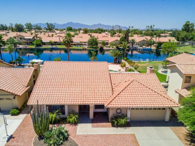11209 W Ashbrook Place, Avondale, AZ 85392 (MLS #5784356) :: Lifestyle Partners Team