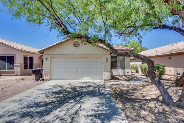 184 W Dublin Street, Gilbert, AZ 85233 (MLS #5784360) :: Lux Home Group at  Keller Williams Realty Phoenix
