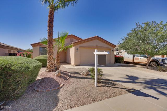 13607 W Canyon Creek Drive, Surprise, AZ 85374 (MLS #5784368) :: Kortright Group - West USA Realty