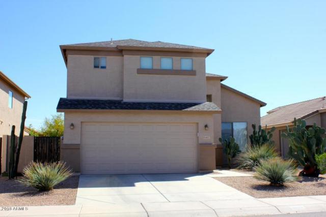 6857 E Javalina Way, Florence, AZ 85132 (MLS #5784400) :: Yost Realty Group at RE/MAX Casa Grande