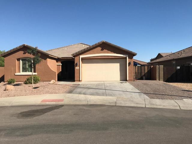 11355 E Sandoval Avenue, Mesa, AZ 85212 (MLS #5784401) :: Lifestyle Partners Team