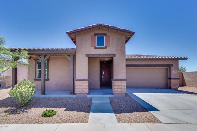 23097 S 226TH Way, Queen Creek, AZ 85142 (MLS #5784425) :: Gilbert Arizona Realty