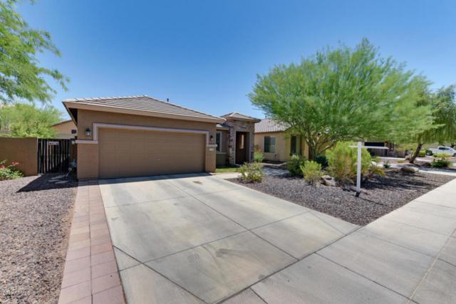 29413 N 68TH Lane, Peoria, AZ 85383 (MLS #5784433) :: The Laughton Team
