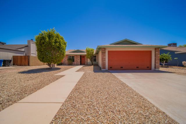 715 N Brandon Drive, Chandler, AZ 85226 (MLS #5784454) :: Lifestyle Partners Team