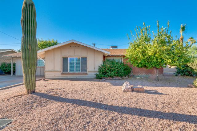 8342 E Sells Drive, Scottsdale, AZ 85251 (MLS #5784457) :: Lux Home Group at  Keller Williams Realty Phoenix
