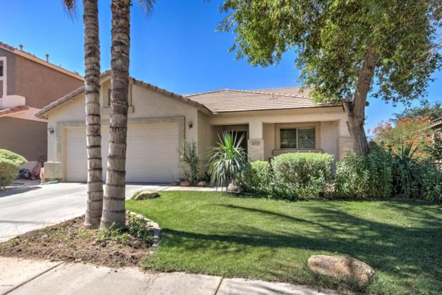 22323 E Calle De Flores Street, Queen Creek, AZ 85142 (MLS #5784468) :: Gilbert Arizona Realty