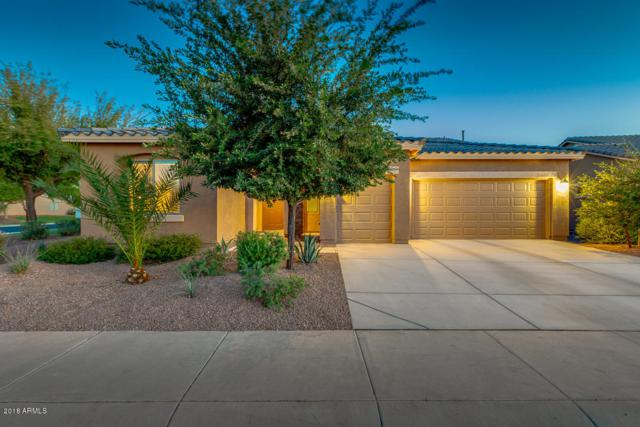 20690 N Enchantment Pass, Maricopa, AZ 85138 (MLS #5784472) :: Yost Realty Group at RE/MAX Casa Grande