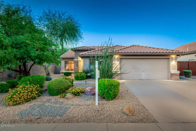 4306 E Kirkland Road, Phoenix, AZ 85050 (MLS #5784474) :: Group 46:10