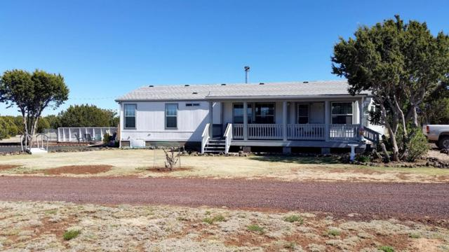 132 Buffalo Road, Vernon, AZ 85940 (MLS #5784481) :: The Daniel Montez Real Estate Group
