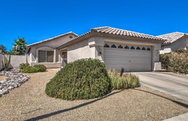 1783 E Gail Drive, Chandler, AZ 85225 (MLS #5784502) :: Yost Realty Group at RE/MAX Casa Grande