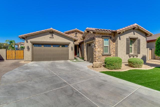 1654 N 158TH Avenue, Goodyear, AZ 85395 (MLS #5784512) :: Santizo Realty Group