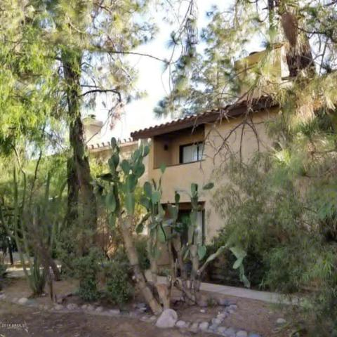 1036 S Mariana Street #5, Tempe, AZ 85281 (MLS #5784515) :: The Pete Dijkstra Team