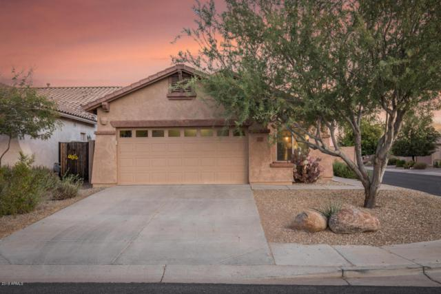 10949 E Castle Dome Trail, Gold Canyon, AZ 85118 (MLS #5784585) :: The Pete Dijkstra Team