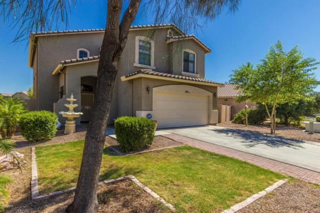 8819 W Gibson Lane, Tolleson, AZ 85353 (MLS #5784647) :: My Home Group