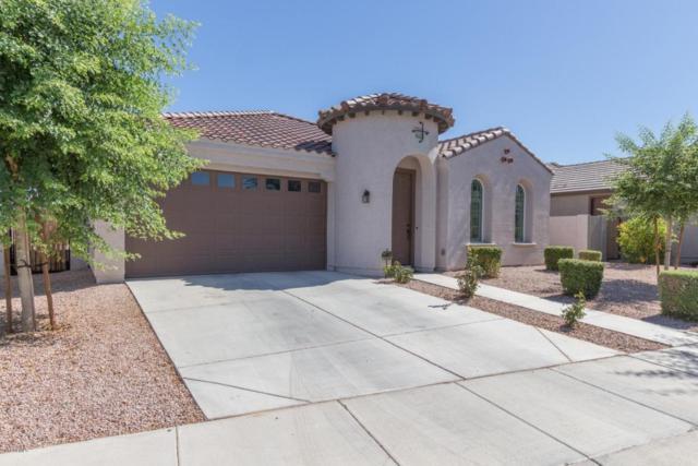 22220 E Creekside Drive, Queen Creek, AZ 85142 (MLS #5784716) :: The Pete Dijkstra Team