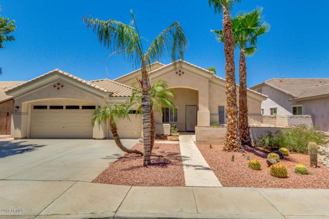 21932 N 81ST Drive, Peoria, AZ 85383 (MLS #5784780) :: The Laughton Team