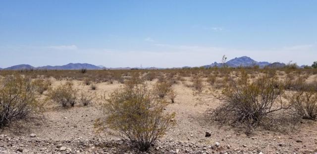 0 W Unknown Road, Tonopah, AZ 85354 (MLS #5784782) :: My Home Group