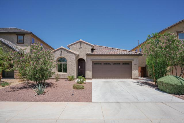13214 W Tether Trail, Peoria, AZ 85383 (MLS #5784812) :: My Home Group