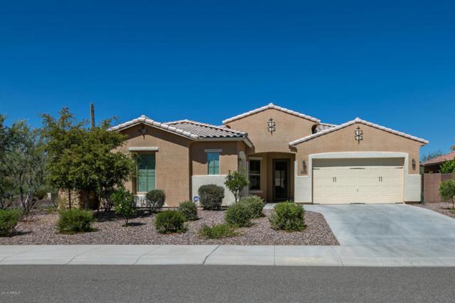 13146 W Calle De Baca, Peoria, AZ 85383 (MLS #5784854) :: My Home Group
