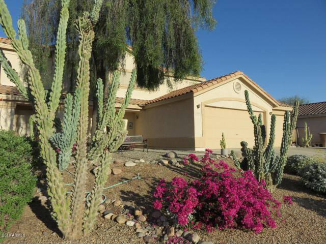 23063 N 105TH Drive, Peoria, AZ 85383 (MLS #5784867) :: My Home Group