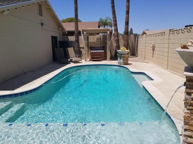 855 N 85TH Street, Scottsdale, AZ 85257 (MLS #5784880) :: The Pete Dijkstra Team
