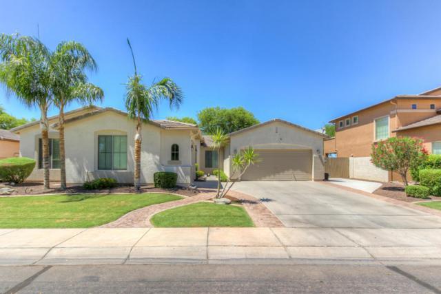3270 E Horseshoe Drive, Chandler, AZ 85249 (MLS #5784884) :: The Pete Dijkstra Team